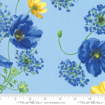 In the Beginning Garden Delights by Gray Sky Studio 6GSE5  Cotton Fabric