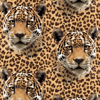 8cceb44e23b9 Studio E On the Wild Side 4032 33 Leopard Faces $9.99/yd