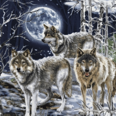 5dd71834437b5 Timeless Treasures Howl at the Moon C4889 Wolf Scenic $10.50/yd