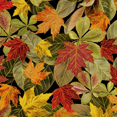 4b25c42ba4 Timeless Treasures Thankful & Grateful CM7086 Multi Fall Leaves Metallic  $10.80/yd PREORDER DUE APRIL/MAY '19