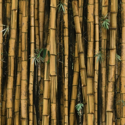 """Bamboo Cotton Knit Single Fabric by the Yard 77/"""" Wide MR Breathe Bamboo"""